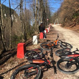 guided e-bike tour